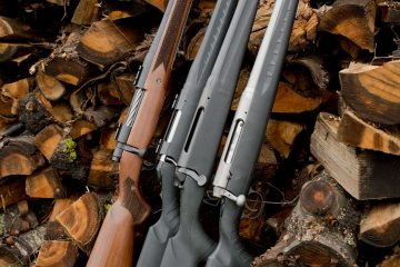 Affordable Rifles