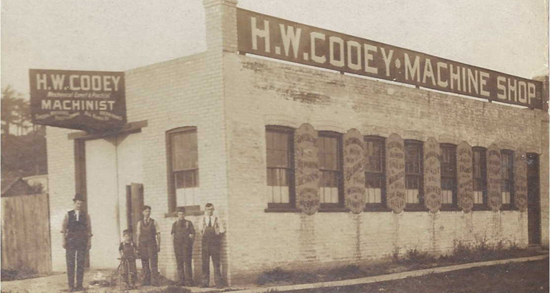 HW Cooey plant