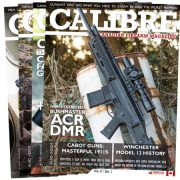Calibre subscription