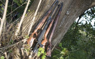air rifles canada